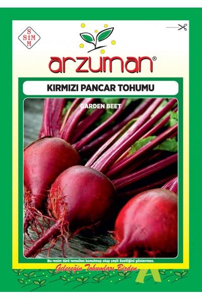 Yalova Fidan Market Kırmızı Pancar Tohumu 10 gr