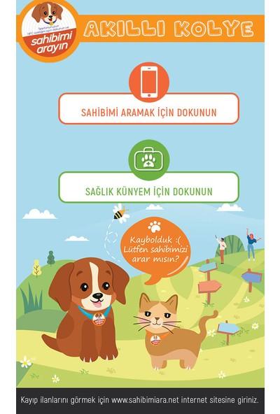 Smart Magnet Sahibimi Ara Köpek Kolyesi 3 Yıllık Kullanım