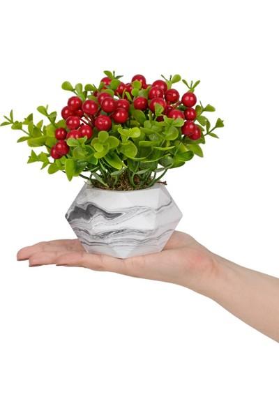 Çiçekmisin Mermer Görünümlü Saksıda Yapay Kokina