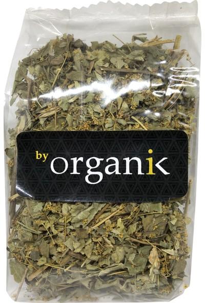 By Organik Aslan Pençesi - Testere Dişli 100 gr