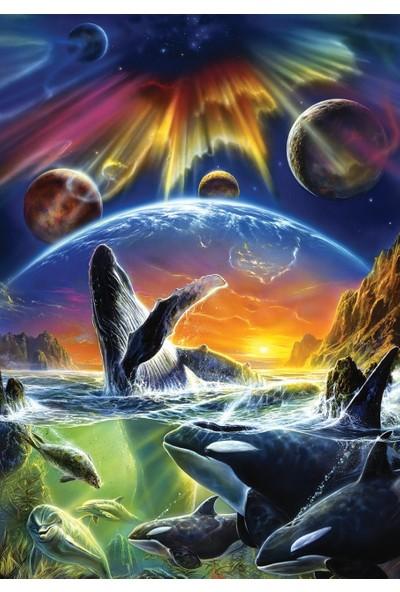 Art Puzzle Orka Evreni 500 Parça Puzzle