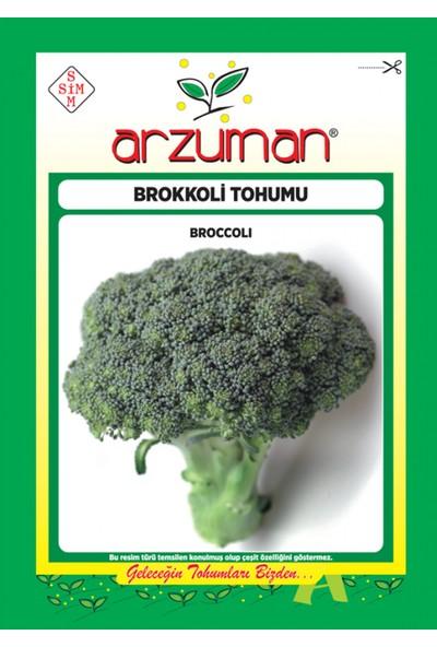Yalova Fidan Market Brokoli Tohumu