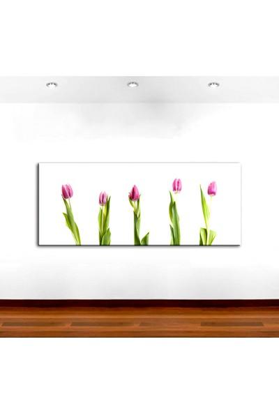 Dekoyes Pembe Laleler Kanvas Tablo 30 x 90 cm