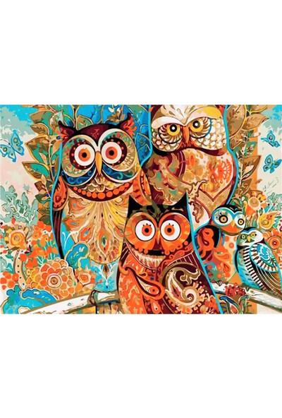 Tale Hobby Sayılarla Boyama Hobi Seti Baykuş Numaralı Akrilik Boya Tablo Seti 40 x 50 cm