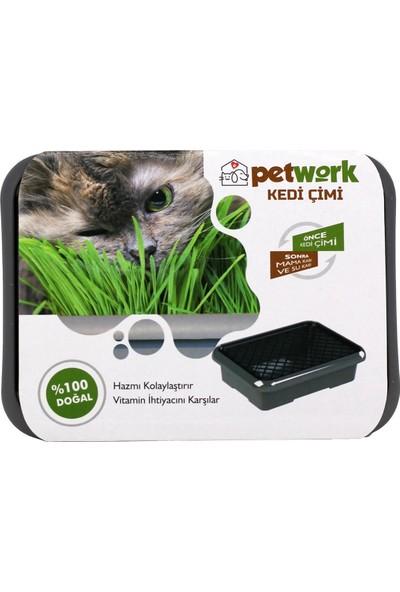 Petwork Kedi Çimi Gri