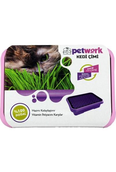 Petwork Kedi Çimi Pembe