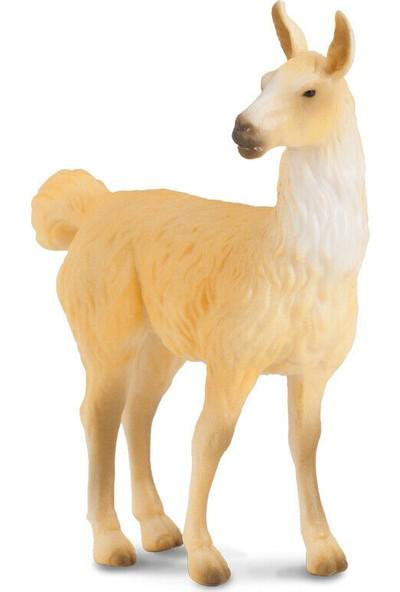 Collecta Lama