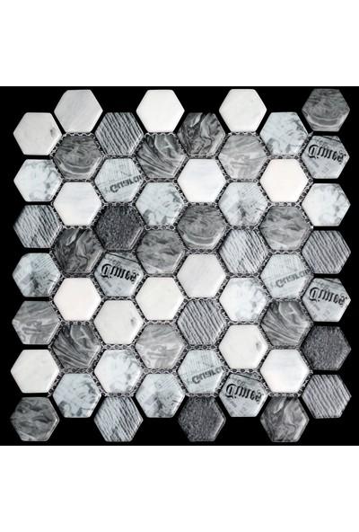 Mossaıca Dijital Baskılı Altıgen Mozaik FBDJ019