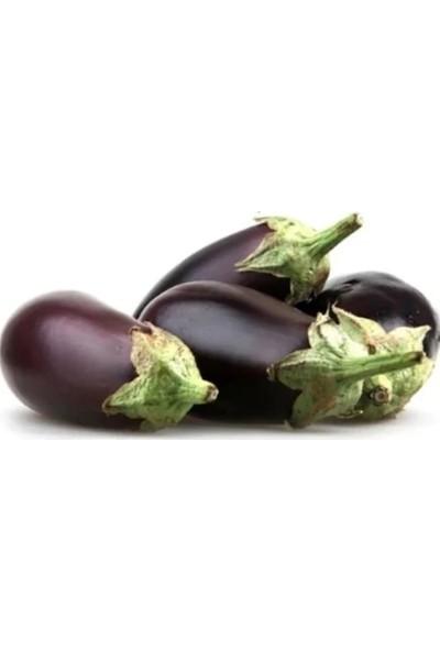 Çam Tohum Antep Dolmalık Patlıcan Tohumu 500'lü