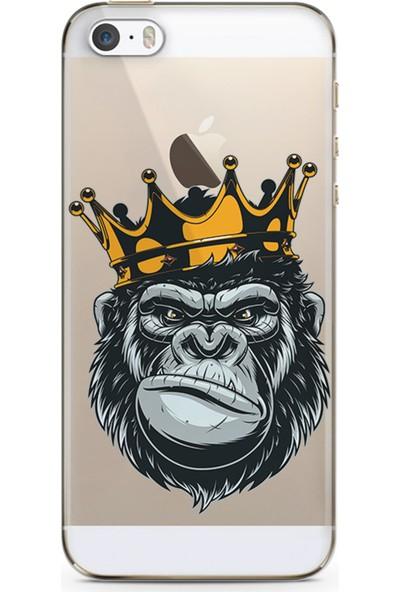 Kılıfland Apple iPhone 5s Kılıf Silikon Resimli Kapak Colorfull King Gorilla Stok 1109