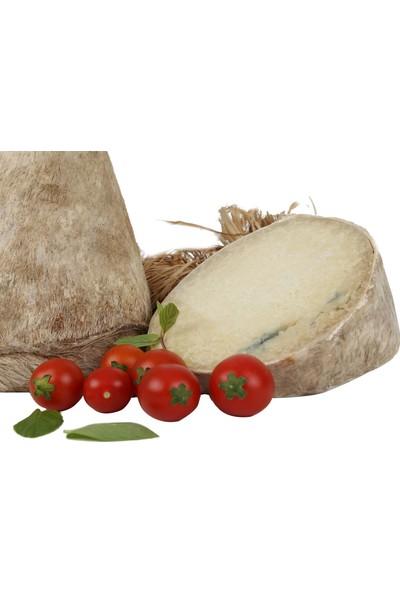 Maya Tulum Peyniri Divle Obruk 270/300 gr