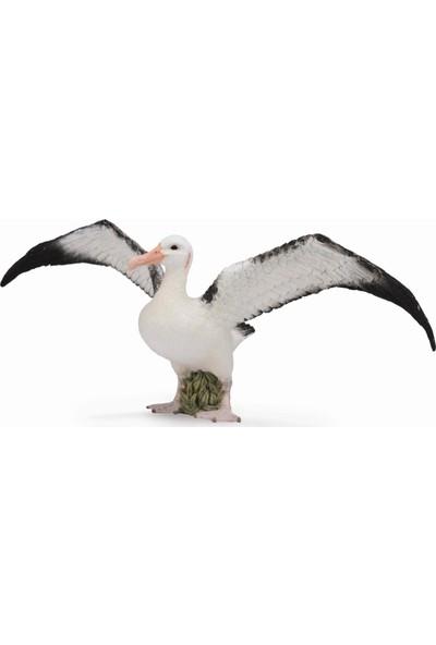 Collecta Gezgin Albatros