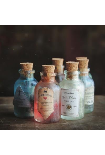 Büyücü Sokağı 6'lı İksir Seti Harry Potter Amortentia Veritaserum Felix Felicis