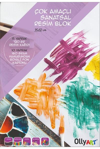 Olly Art Çok Amaçlı Sanatsal Resim Blok 35 x 50 cm. 25 Ypr. 120+160 gr Fon Kartonu