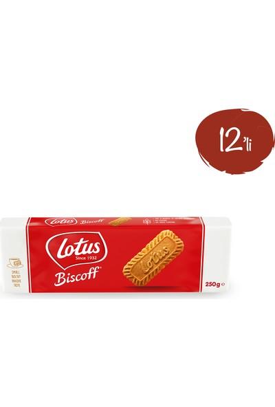 Lotus Biscoff Karamelize Bisküvi 250 gr - 12 Paket