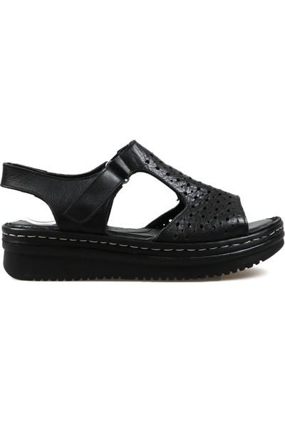 Hammer Jack Siyah 11 Kadın Terlik Sandalet 164 505-Z