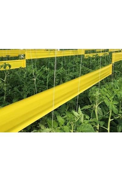 Biogreen 30 x 100 Sarı Yapışkan Rulo Tuzak