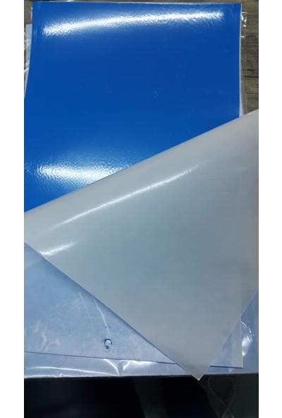 Biogreen 25 x 40 Mavi Kart Tuzak