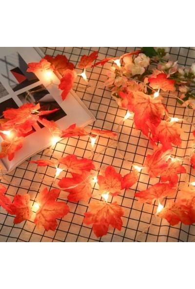 Buffer Sonbahar Konseptli Dekoratif Yaprak Desenli Şerit LED Pilli Gün Işığı Aydınlatma Gece Lambası