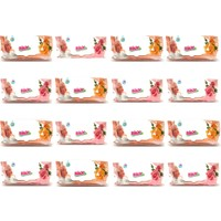 Birx Kapaklı Islak Havlu 16'lı Paket 16 x 90 1440 Yaprak