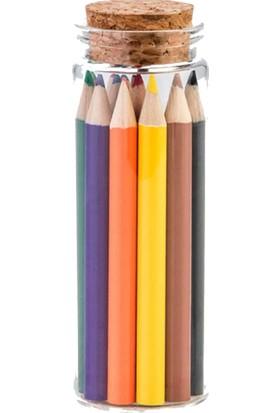 Legami K065910 Kurşun Kalem Tüpte 12 Renk