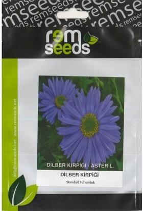 Rem Seeds Dilber Kirpiği Çiçek Tohumu 40'lı