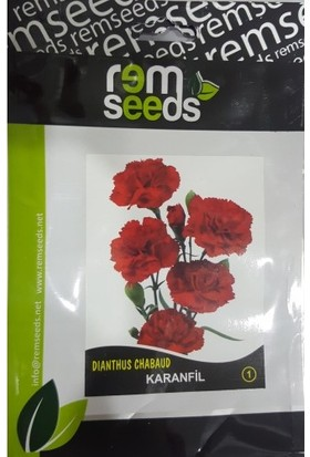 Rem Seeds Karanfil Çiçek Tohumu 1 Dianthus Chabaud 50'li