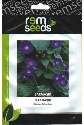 Rem Seeds Sarmaşık Çiçek Tohumu Tropaeolum Azureum Blue Nasturtium 12'li