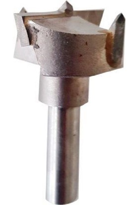 Bilteks Tas Menteşe Bıçağı 30 mm