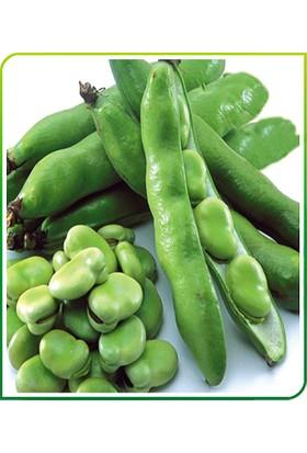 Rem Seeds Bakla Tohumu Hilal 50 gr 100'lü