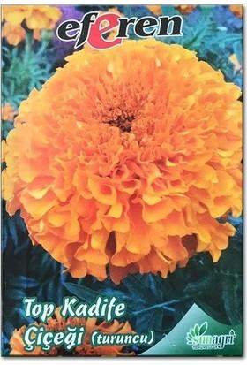 Sunagri Turuncu Kadife Çiçeği Tohumu