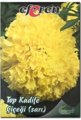 Sunagri Sarı Kadife Çiçeği Tohumu