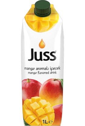 Juss Mango Içecek - 1 lt - Kutu x 12