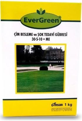 Evergreen Çim Besleme ve Şok Tedavi Gübresi 30-5-10 + ME 1 kg Kutu