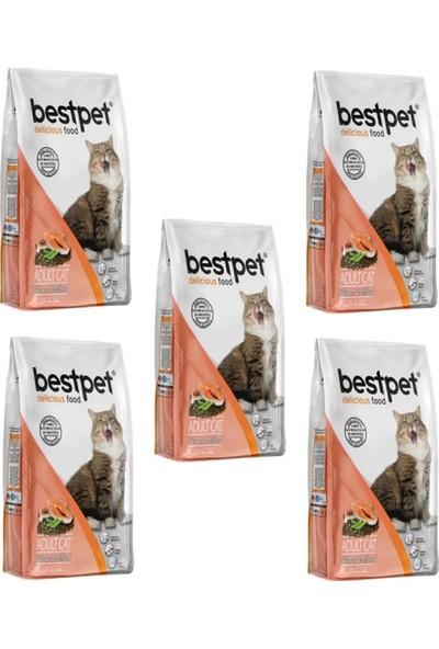 Bestpet Sterilised Somonlu Kısır Kedi Maması 1 kg x 5 Adet