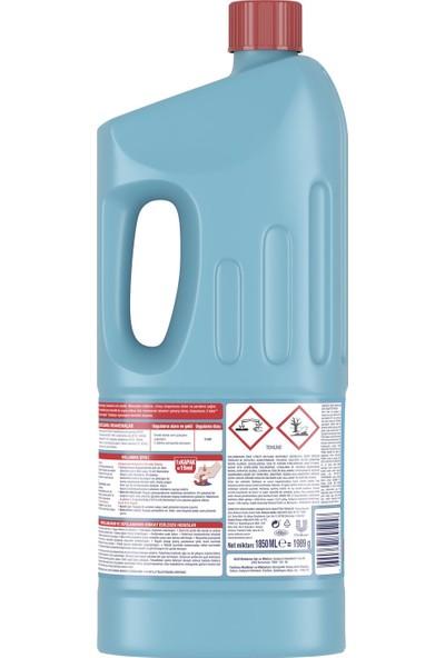 Domestos Çamaşır Suyu Okalıptus Ferahlığı 1850 ml