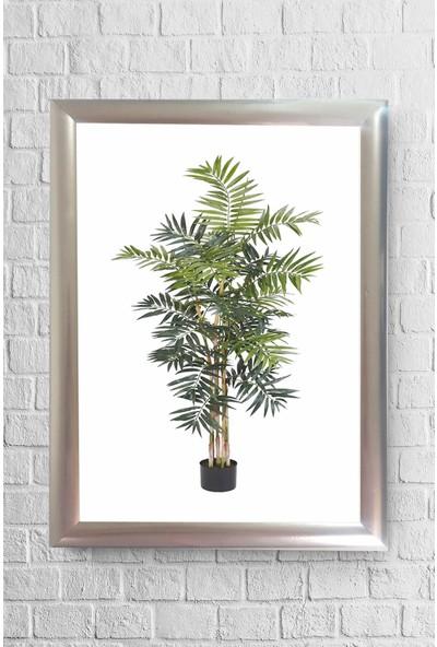Lyn Home Saksı Ağaç Çerçeveli Poster Tablo 23,5 x 33,5 cm