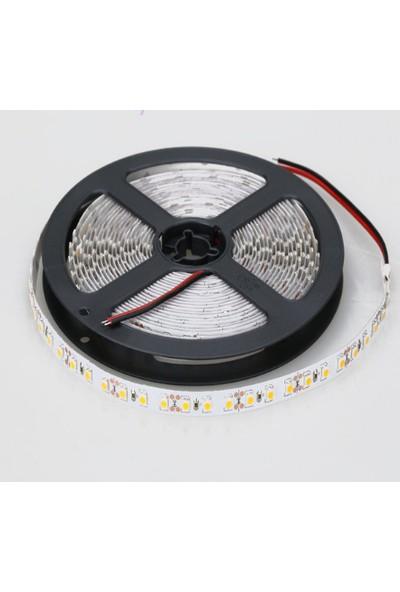 Ct-4481 Led Şerit 8 Çipli Günışığı Işık 5MT