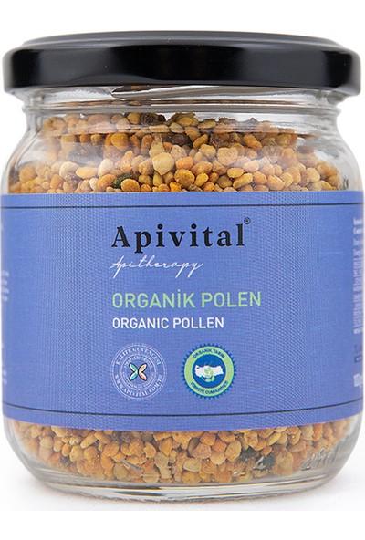 Apivital Organik Polen 100 g