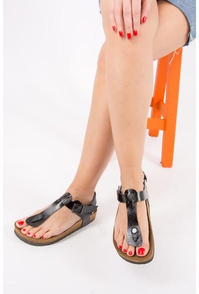 Fox Shoes Siyah Kadın Sandalet B777805008
