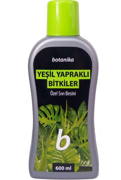 Botanika Yeşil Yapraklı Bitkiler İçin Besin