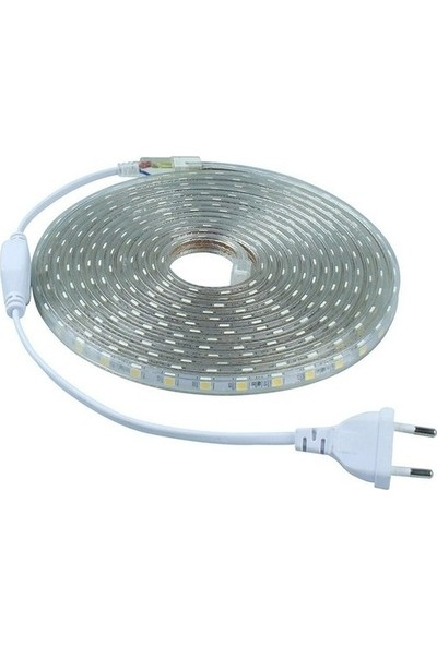 Foblight IP65 Dış Mekan 220 V 3 Çipli 5050 Gün Işığı Şerit Hortum LED Gün Işığı + Fiş 3 m