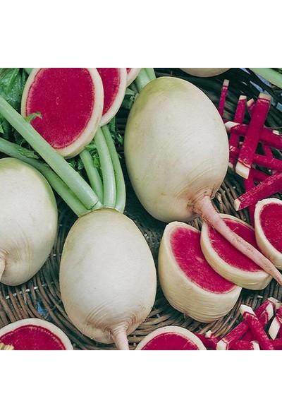 Euro Seed Turp Tohumu Çin Turpu 3 gr