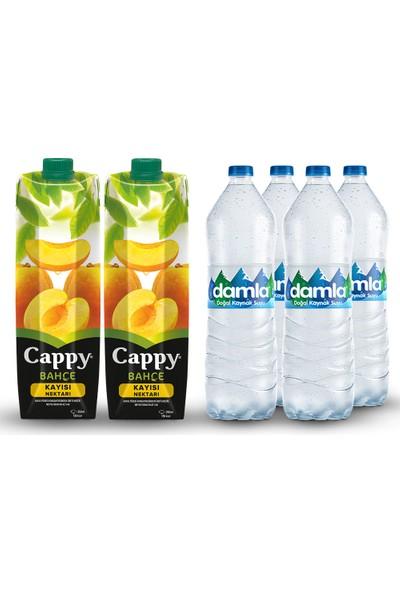 Damla Su ve Cappy Kayısı Karma Paketi
