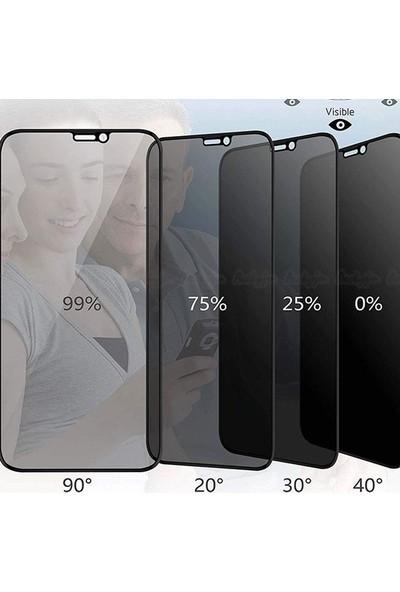 Gpack Huawei P30 Pro Privacy Gizlilik Filtreli Hayalet Nano Cam