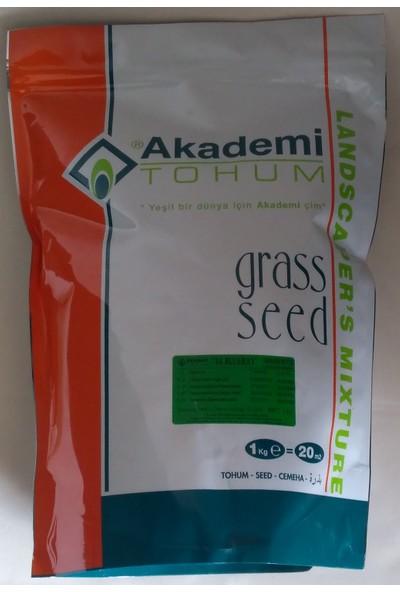 Akademi Tohum Çim Tohumu Bahçeler ve Yeşil Alanlar Için 1 kg