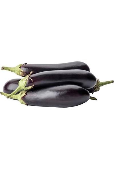 Rem Seeds Patlıcan Tohumu Pala 49 25 gr 5000'li