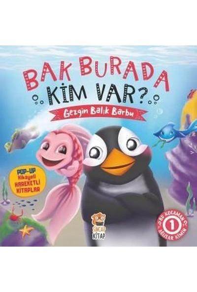 Bak Burada Kim Var Gezgin Balık Barbu / Popup İle Keşfet - Asiye Aslı Aslaner
