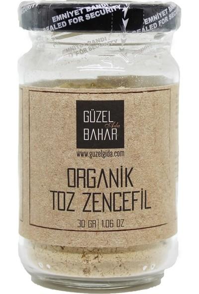 Güzel Gıda Toz Zencefil 30 gr