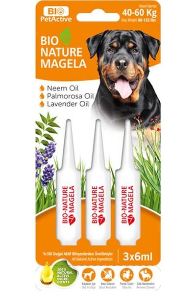 Bio Petactive Bio-Nature Magela 40-60 kg Köpek Ense Damlası (3 x 6 Ml)